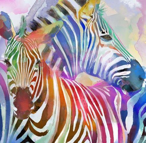 schilderij zebra 80x80