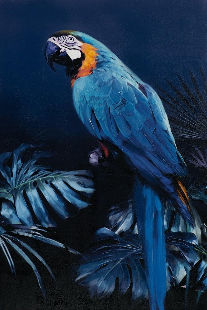 Schilderij papegaai 120x80