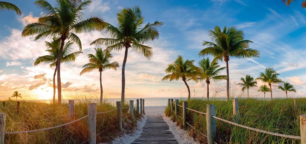 Plexiglas tropisch strand 66x140