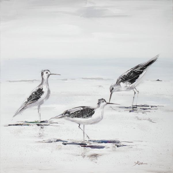 schilderij meeuwen op het strand 60x60