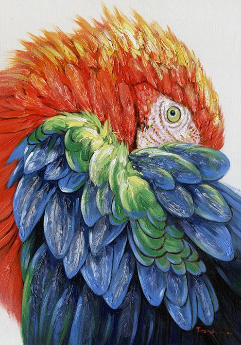 schilderij papegaai 70x100