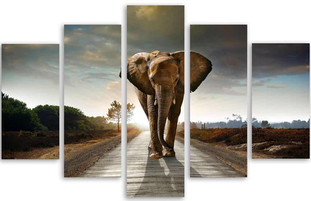 Meerluik schilderij olifant 100x150