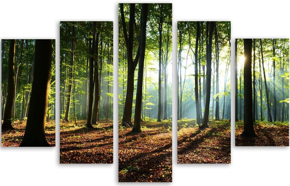 Meerluik fotokunst bomen 100x150