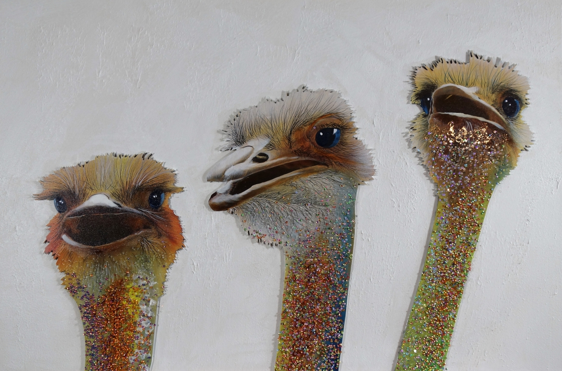 Schilderij struisvogels 80x120
