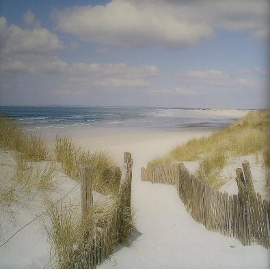 100x100 Acrylglas strand en duinen