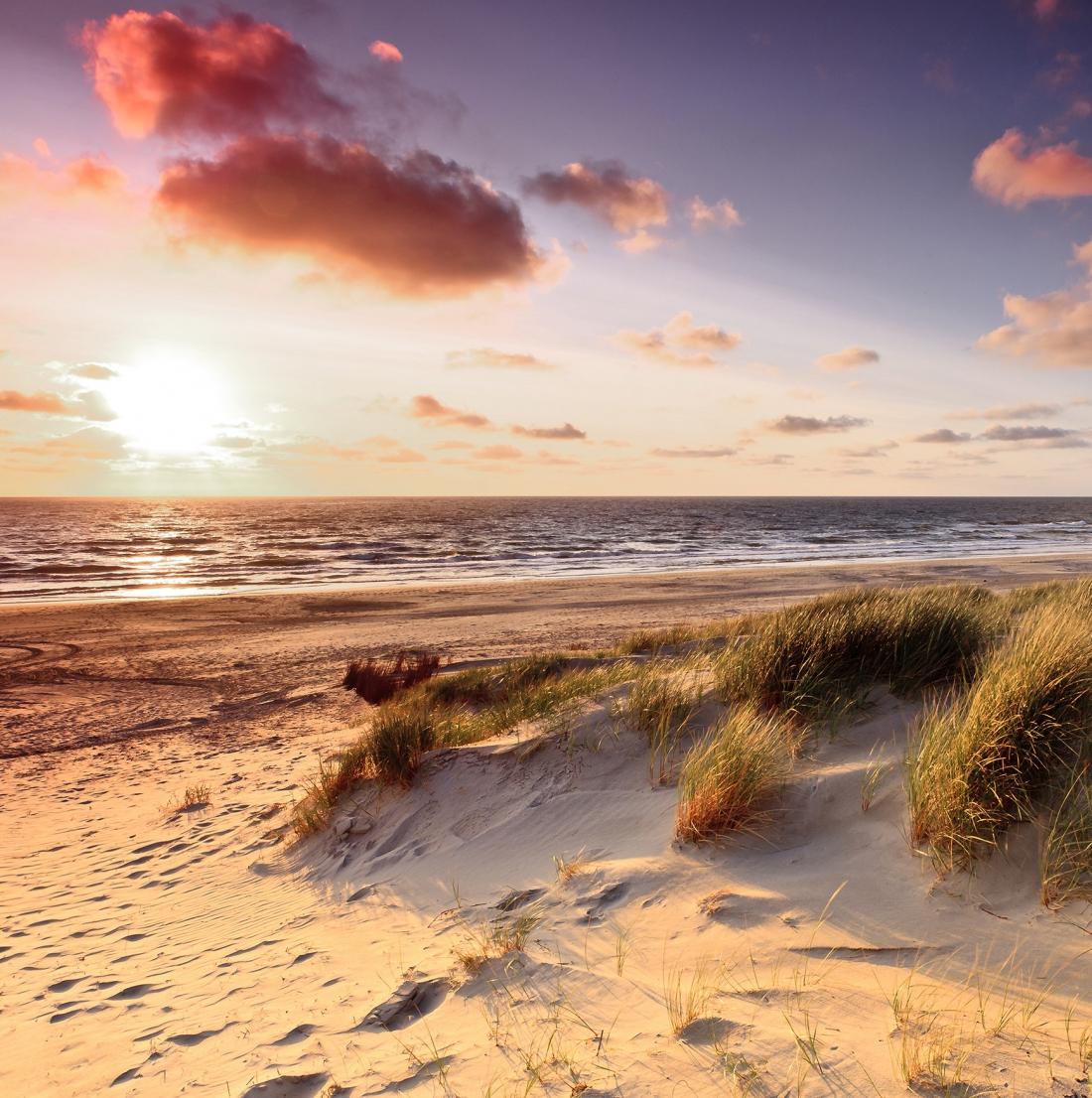 Strand en duinen plexiglas 100x100