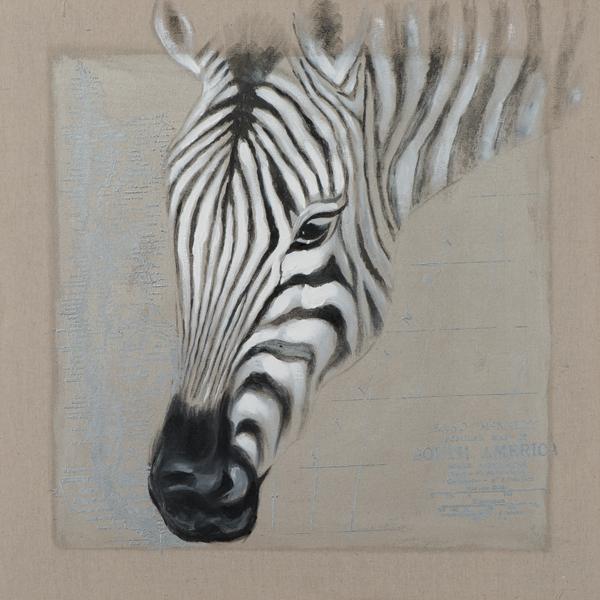 Schilderij Zebra 70x70
