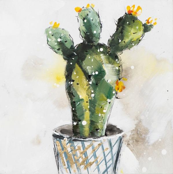 cactus in pot 40x40