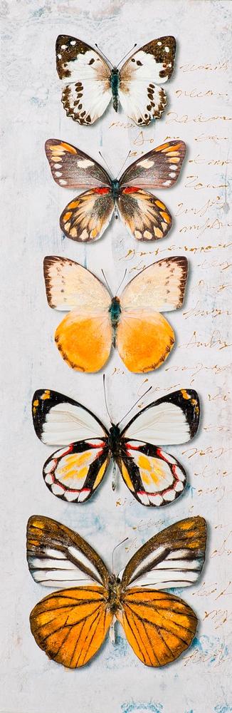 schilderij vlinders 30x90