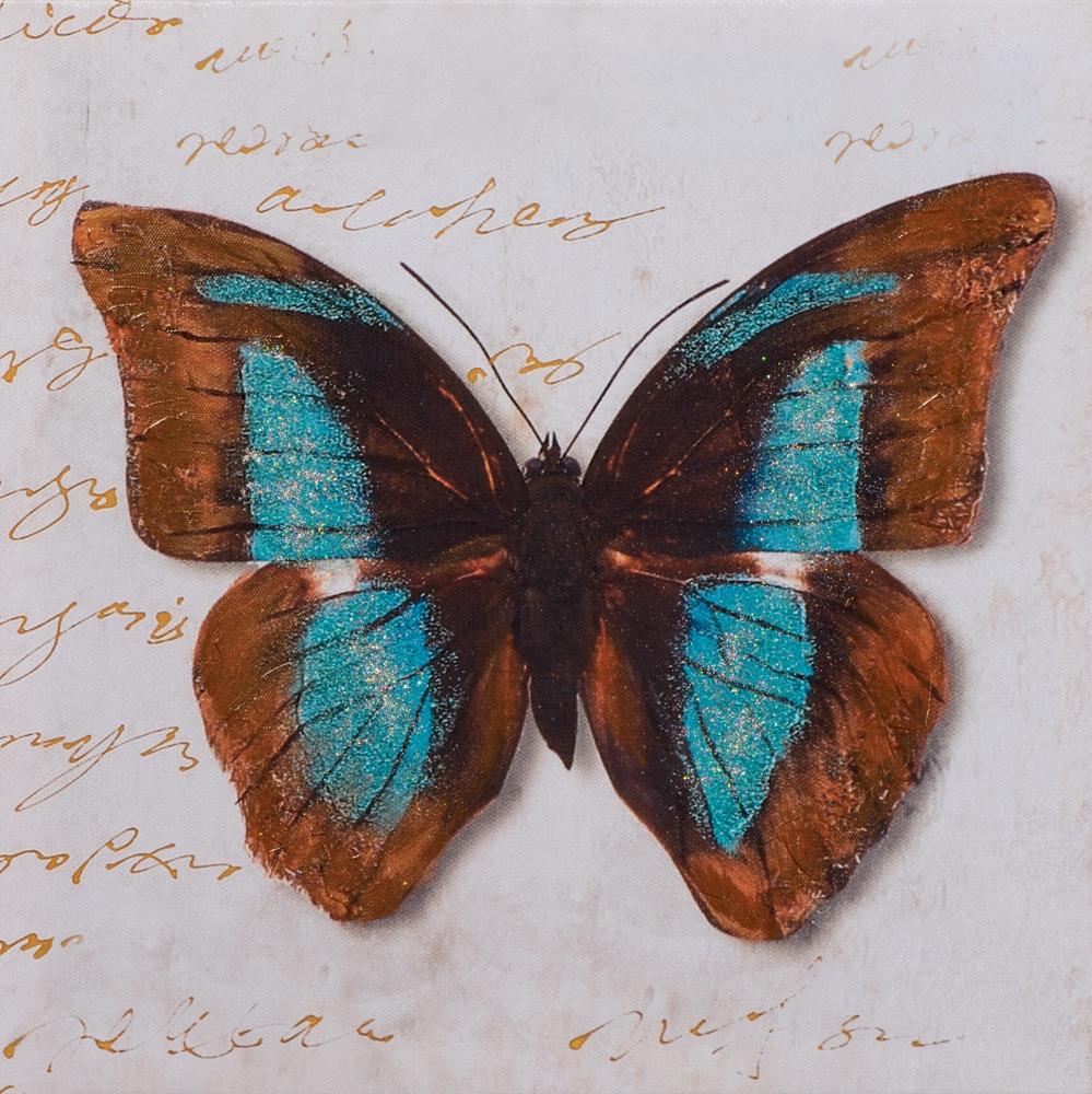 schilderij vlinder 40x40