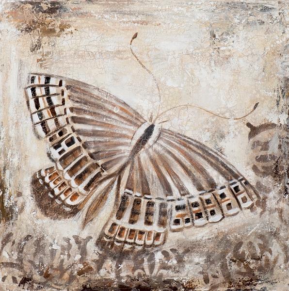 Schilderij vlinder 50x50