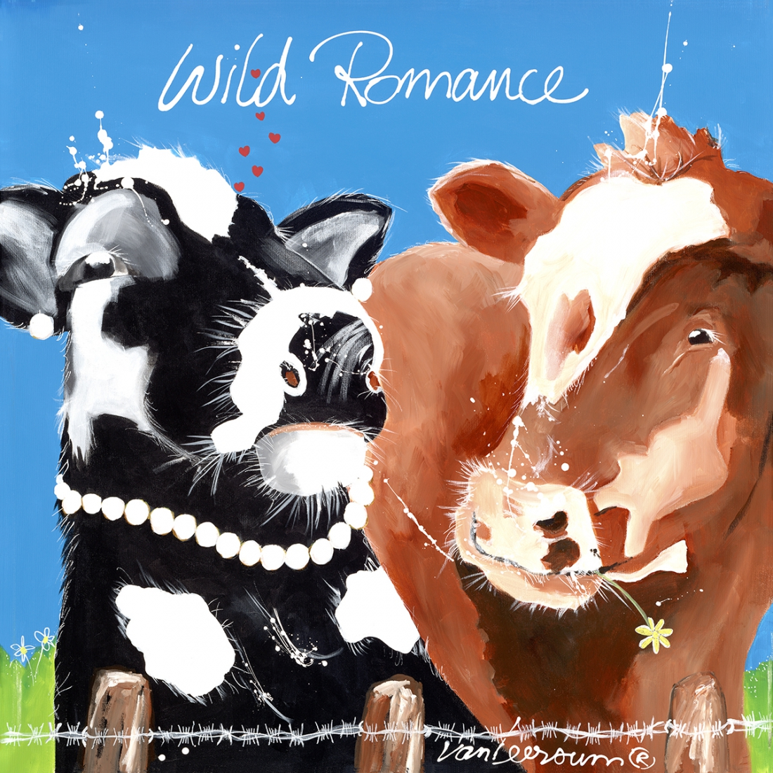 Cow Wild Romance 70x70