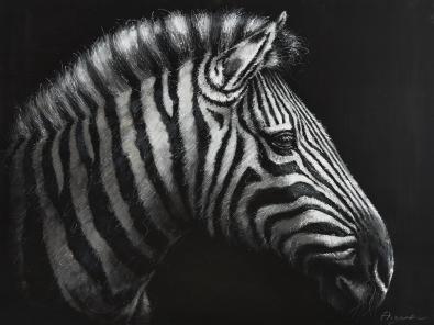 schilderij zebra 90x120