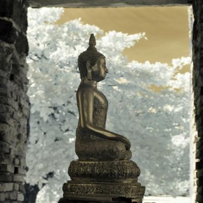 Boeddha op glas 100x100