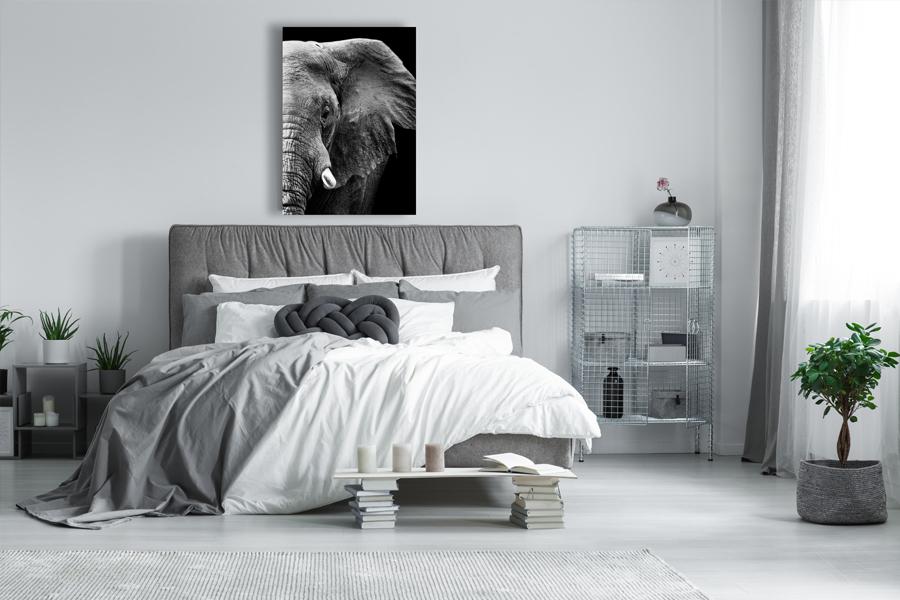 zwart wit schilderijen